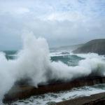 Avis de tempête et naufrages pour les startups cet été